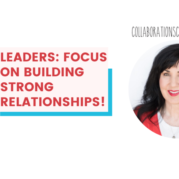 leadership development and mediation strategies